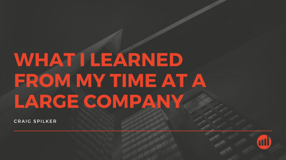 what-i-learned-from-large-companies